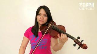 Billie Eilish - idontwannabeyouanymore(Violin Cover)