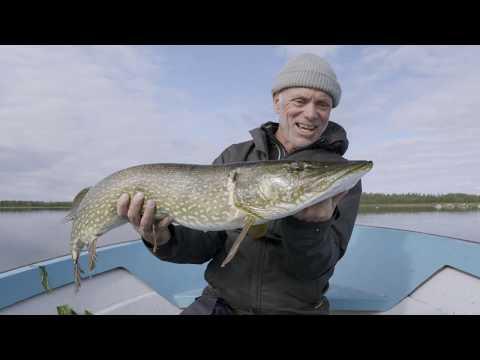 Jeremy  reussi à pêcher du lourd ! - Jeremy Wade, en eaux troubles - Discovery Channel