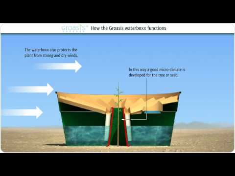 How does the Groasis Waterboxx plant cocoon work against desertification?
