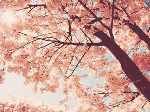 Epitone Project - Spring Day, Cherry Blossoms & You