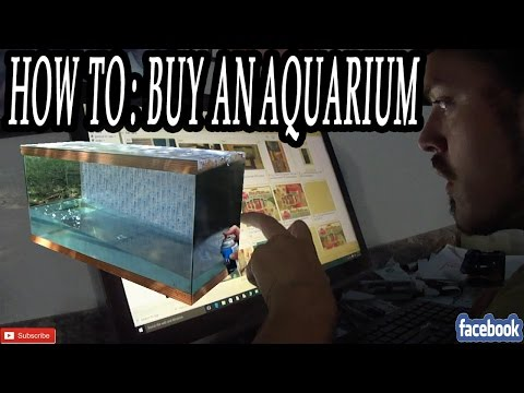 How To: Buy An Aquarium, HOW TO FIND THOSE GREAT DEALS