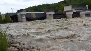 Hochwasser ulm 2013, 02.06.
