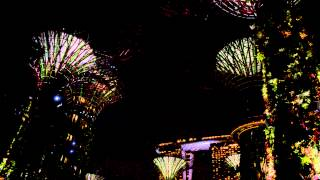 "OCBC ""Garden Rhapsody"" @ Garden By The Bay Singapore (Nikon D3200).."