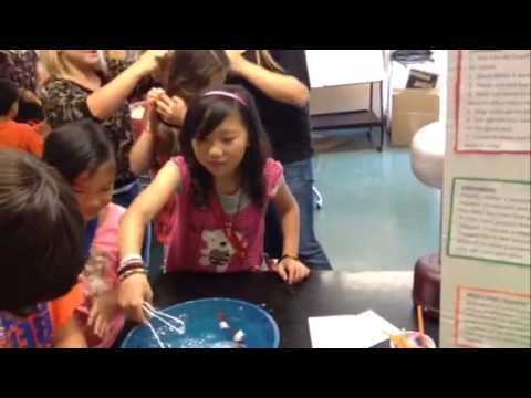 Santiago Physics Project Static Electricity 2014