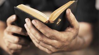 Record Few Amerícans Think The Bíble Is Literally True