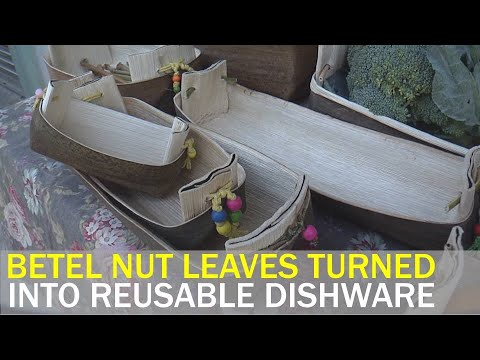 Made in Taiwan: Sustainable dishware made from betel nut leaves | Taiwan News | RTI