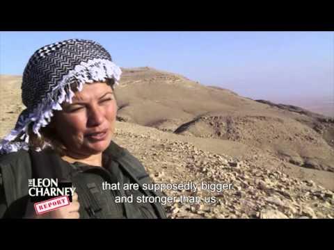 Itai Anghel | Charney Report