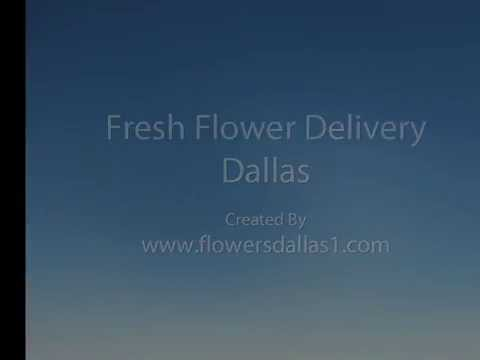 Fresh Flower Delivery Dallas, Texas. Affordable Florist Delivery Service Dallas