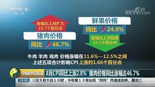 [中国财经报道]8月CPI同比上涨2.8% 猪肉价格同比涨幅达46.7%| CCTV财经
