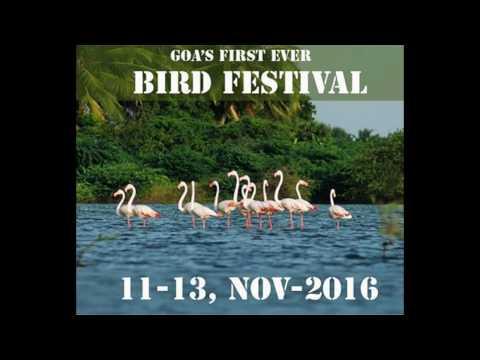 Goa's First Ever Bird Festival