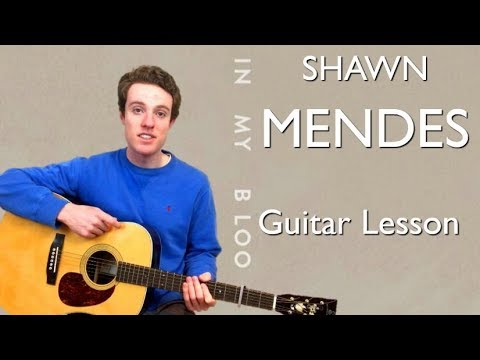 Shawn Mendes In My Blood Guitar Lesson Chords Youtube
