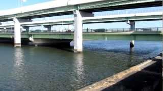 天白扇川橋 南岸西側 23号線 シーバス 釣り ポイント 天白川