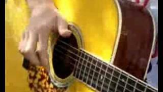 Paddy Sun-Guitar Garden 4