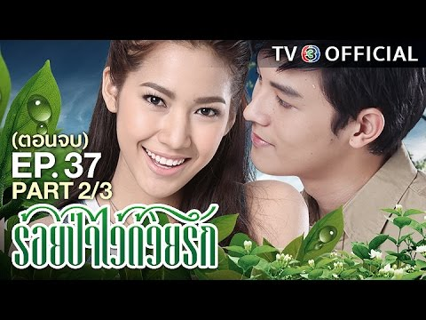ย้อนหลัง ร้อยป่าไว้ด้วยรัก RoiPaWaiDuayRak EP.37 ตอนจบ 2/3 | 28-02-60 | TV3 Official