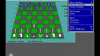 DESQView, Windows 3.0 and more