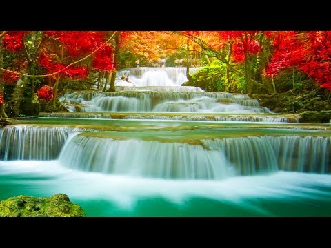 Relaxing Music 24/7, Meditation, Sleep Music, Healing, Calming Music, Zen, Yoga, Relax, Sleep, Study