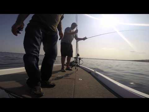 Big catfish lake hefner while bass fishing on medium heavy for Lake hefner fishing report