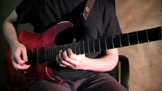 Joe Satriani - Crushing Day (Cover by Vladimir Shevyakov)