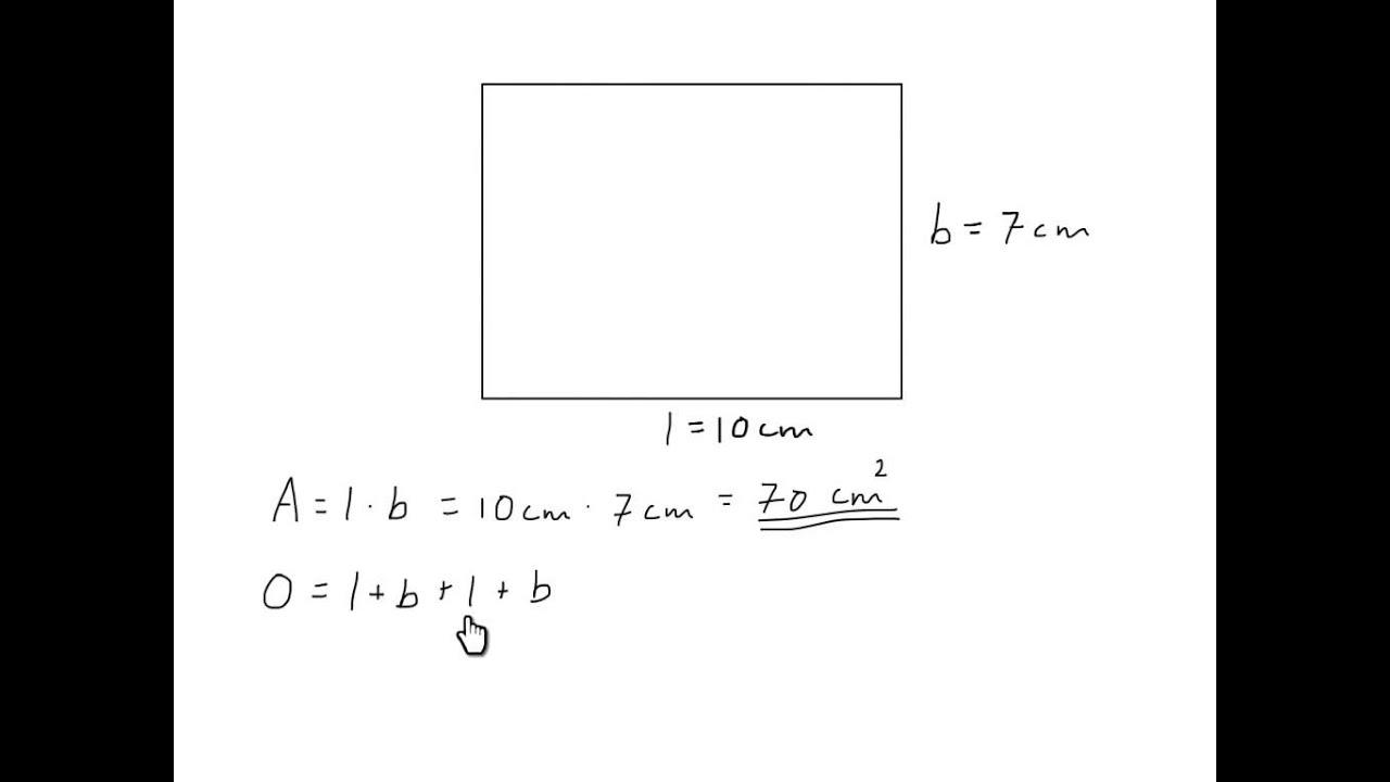 Areal og omkrets rektangel