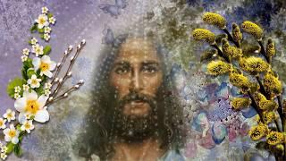 🌹С Вербным Воскресеньем! 🌹Самое лучшее