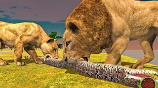 Furious Lion Vs Angry Anaconda Snake: Wild Animals Simulator