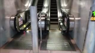 [FUJITEC製]仙台市地下鉄東西線 連坊駅 駅構内エスカレーターとエレベーター thumbnail