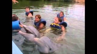 Swimming with Dolphins, Varadero, Cuba