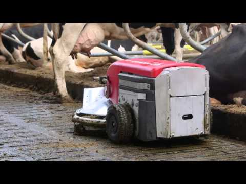 Lely Discovery 90SW - Testimonial Jack Nicolaes (Dutch / Holland)