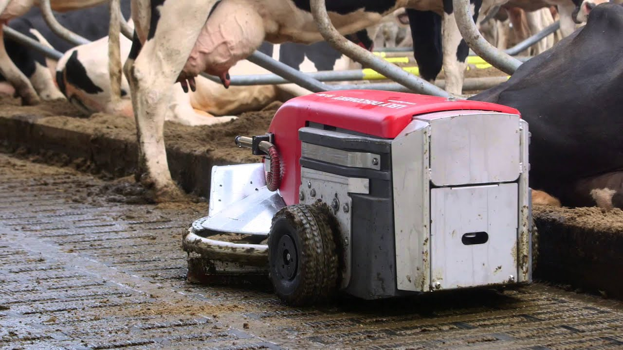 Lely Discovery 90SW - Testimonial Jack Nicolaes (NL)