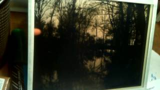 """The Pond at dawn"" contemporary daguerreotype modern daguerreotype"
