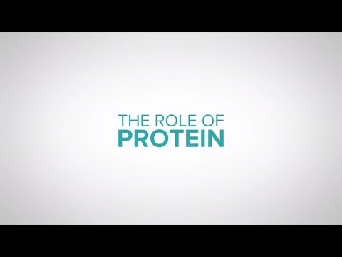 The role of protein in dairy cow nutrition