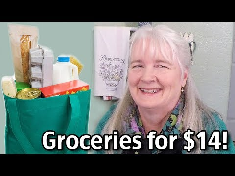Groceries for $14 Living On Social Security