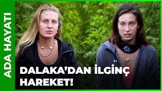 Dalaka ile Dimitra Arasında Gerginlik! - Survivor 88. Bölüm