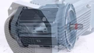 ABB M2AA 112 M4 исполнение 1081(Электродвигатель асинхронный ABB M2AA 112 M4: мощность: 4 кВт; номинальная скорость вращения: 1500 об./мин.; габарит..., 2013-11-08T21:42:06.000Z)