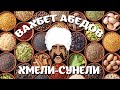 Вахбет Абедов - Хмели-Сунели [Official Video]
