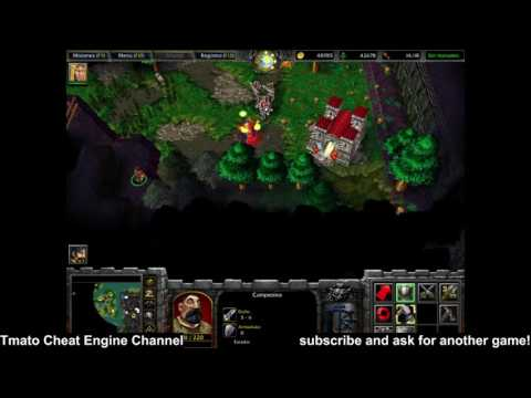 Warcraft III: Reign of Chaos Immortal, enemy hp 1 Infinite gold, wood, food Tmato Cheat Engine