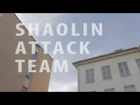 SHAOLIN ATTACK TEAM