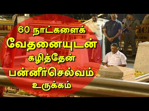 Exclusive: O Panneerselvam Speaks on his Allegations against