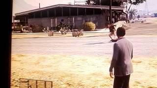 Gta5 random guy kills a dog