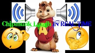 Chipmunk Laugh IN REAL TIME