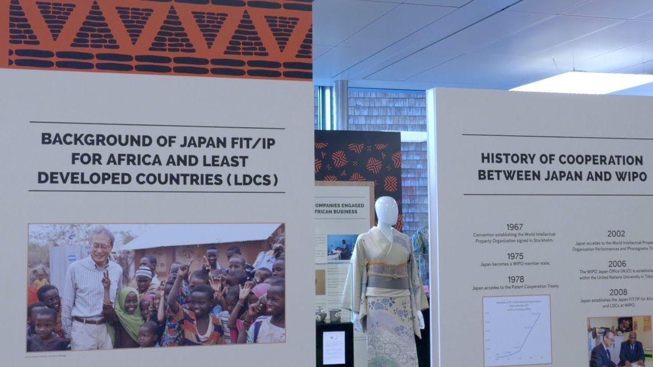 Africa Japan Night at WIPO