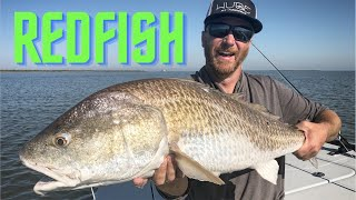 BULL REDFISH (fly fishing)