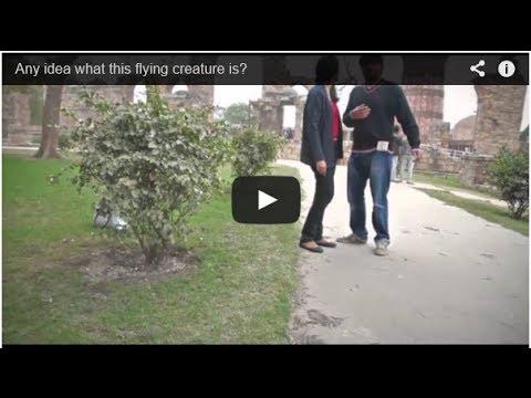 SHOCKING VIDEO!!! Shot at Qutub Minar in Delhi