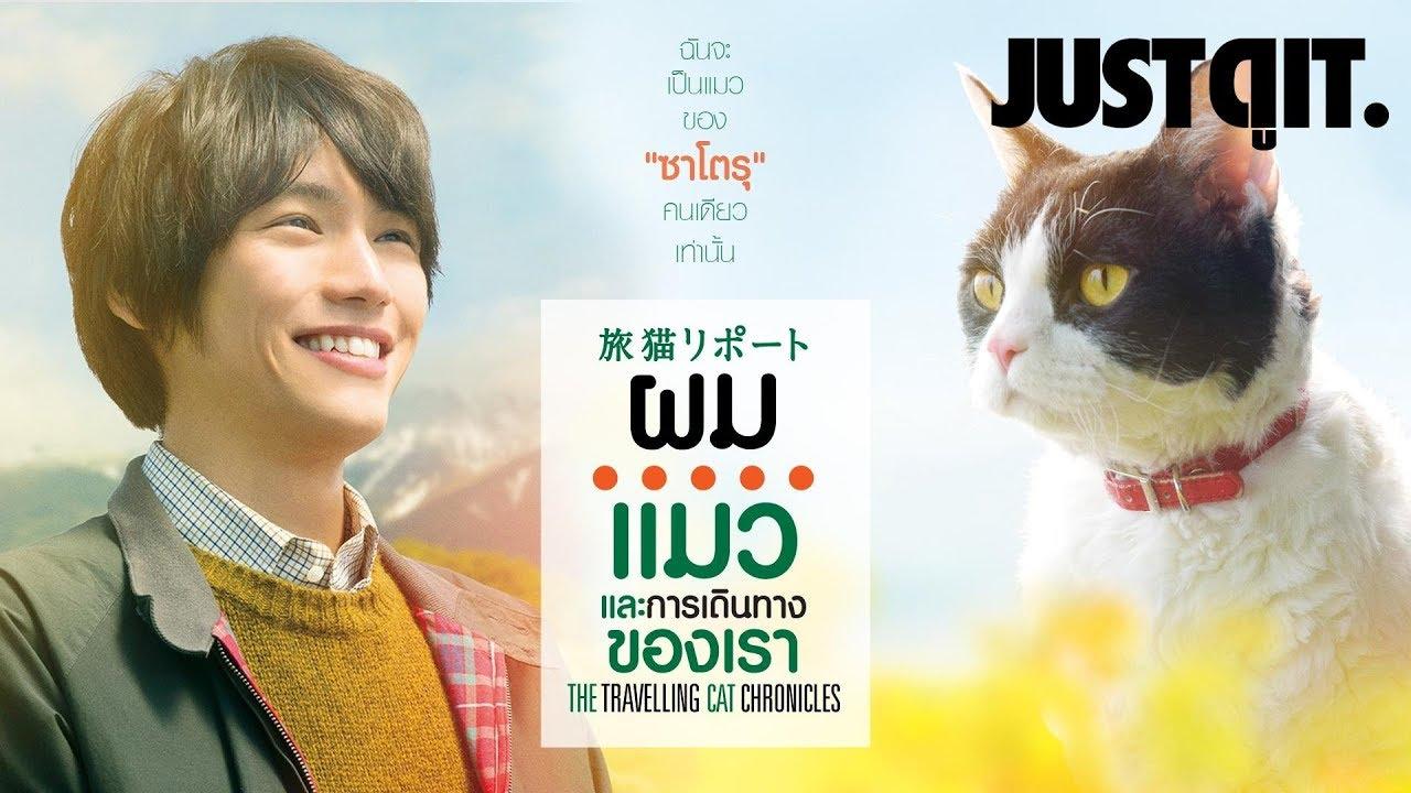 รู้ไว้ก่อนดู The Travelling Cat Chronicles ผม แมว และการเดินทางของเรา #JUSTดูIT