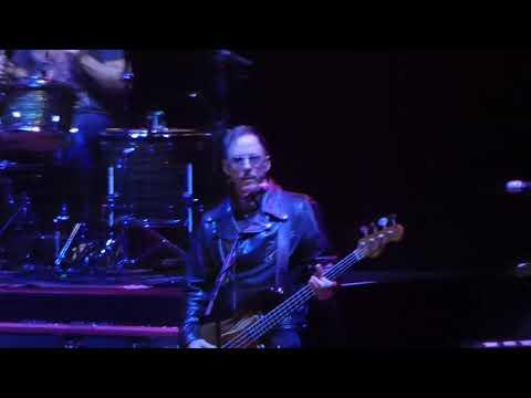 Weezer performs
