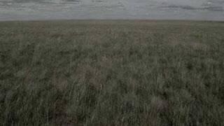Watch music video: Joan Baez - Sagt Mir Wo Die Blumen Sind