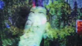 Tijuana Bibles - Wild River (Official Video)