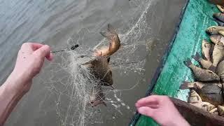 Первая рыбалка по открытой воде сетями много карася