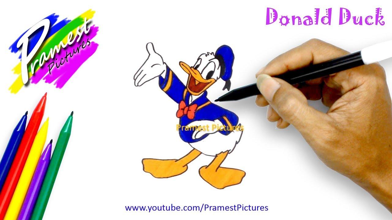 Donal Bebek Cara Menggambar Dan Mewarnai Gambar Kartun Anak Youtube