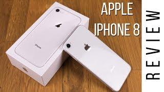 Buy Iphone 8 Plus Appleankerspigen Egypt Souqcom